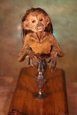 Feejee Mermaid